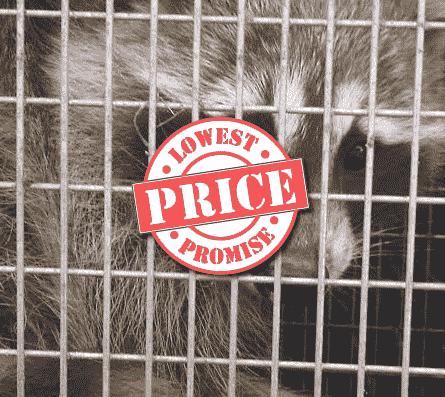 price-guarantee-jdm-pest