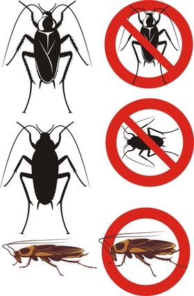 Tips on Eliminating Cockroaches