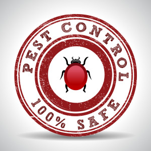 Are Critters Bothering You? Here's How to Find the Best Pest Control Company in Richmond Hill