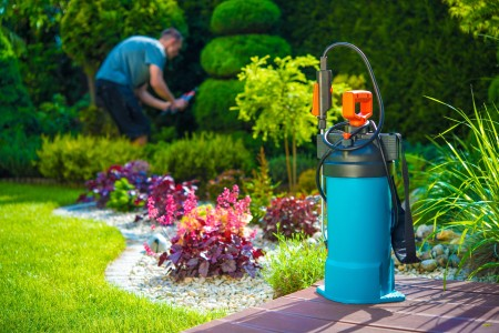 The Importance of Proper Garden Pests Identification