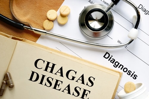 What You Need to Know about Chagas Diseas