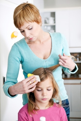 Facts to Know about Lice