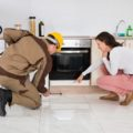 Pest-Proof Your Home for the New Year