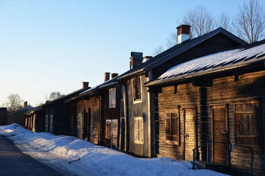 Rid Your Chimney of Winter Pests