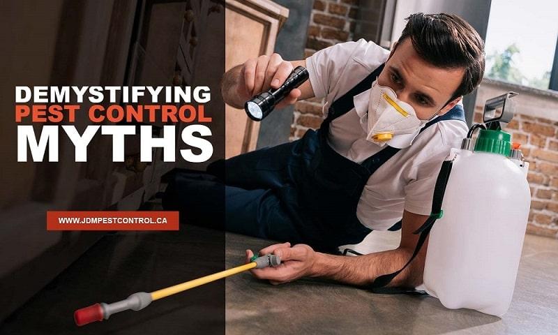 Demystifying Pest Control Myths