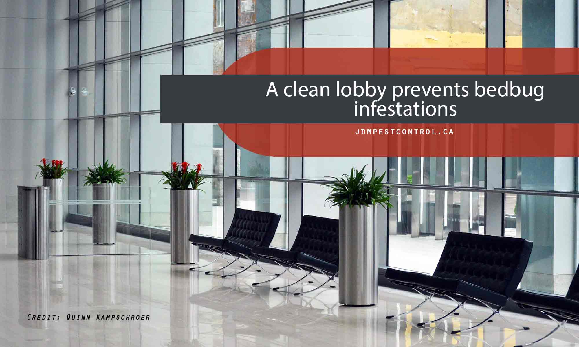 A clean lobby prevents bedbug infestations
