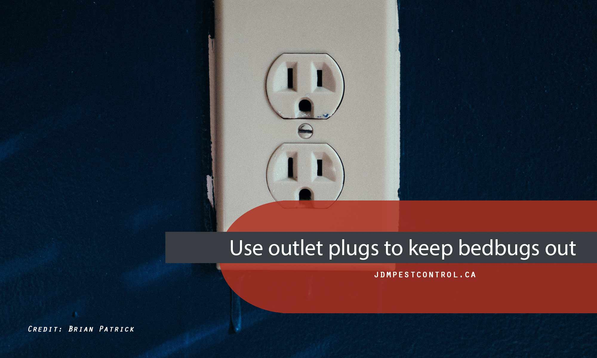 Use outlet plugs to keep bedbugs out.