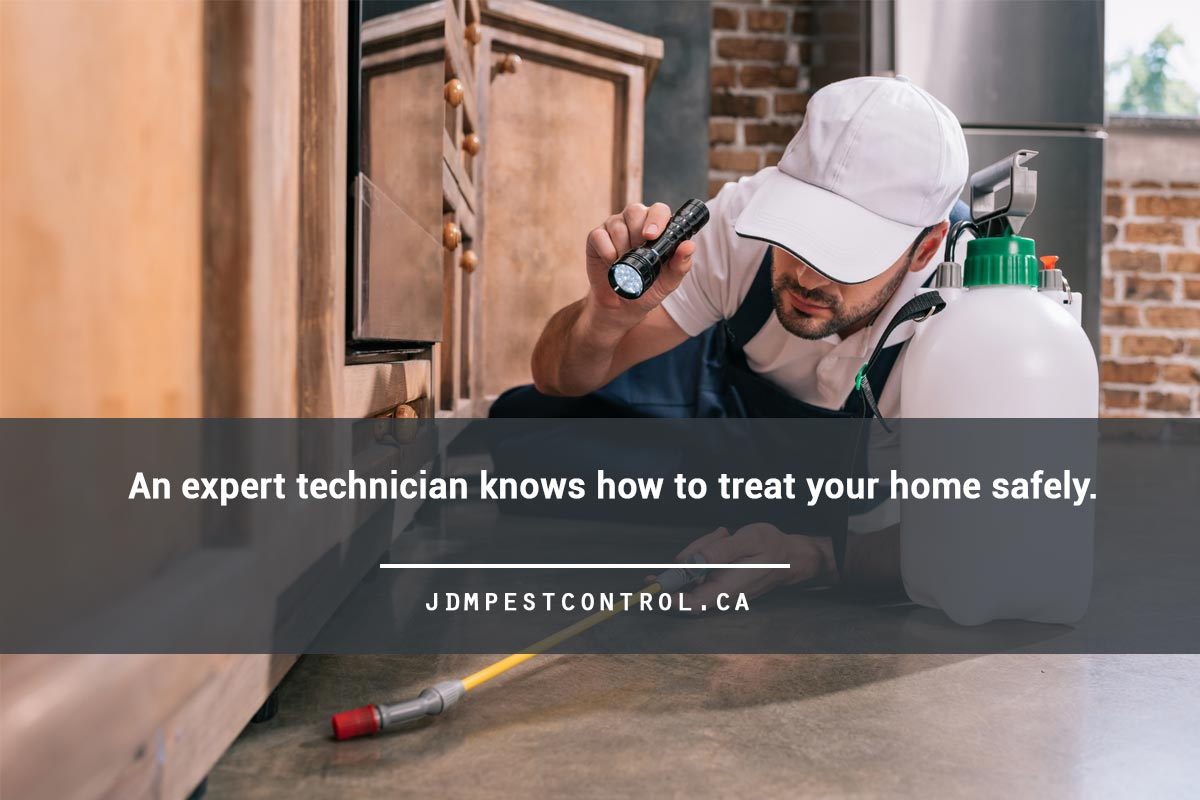 An expert technician knows how to treat your home safely.