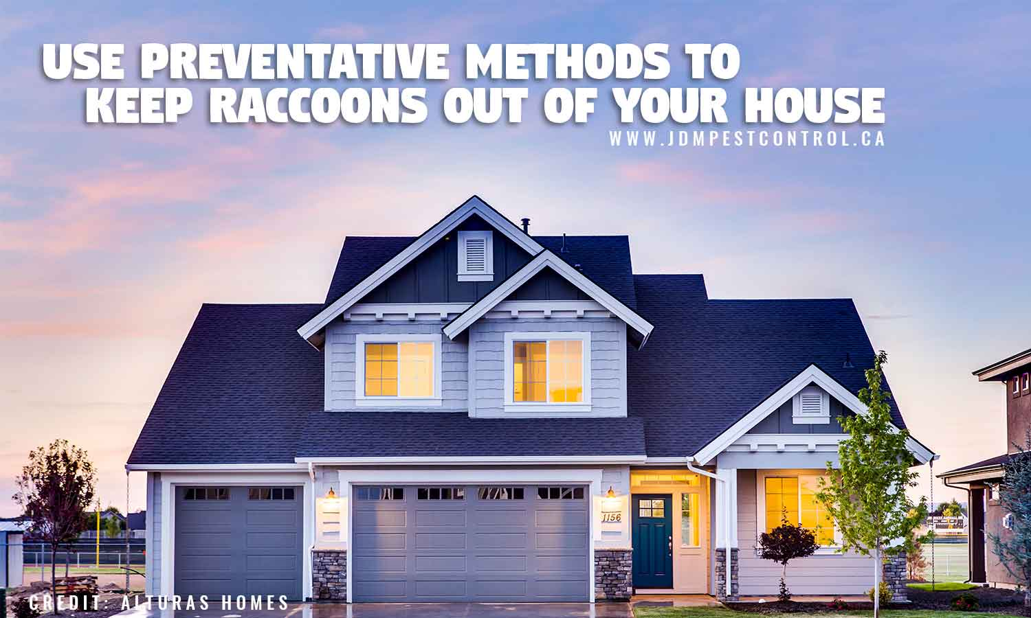 Use preventative methods to keep raccoons out of your house