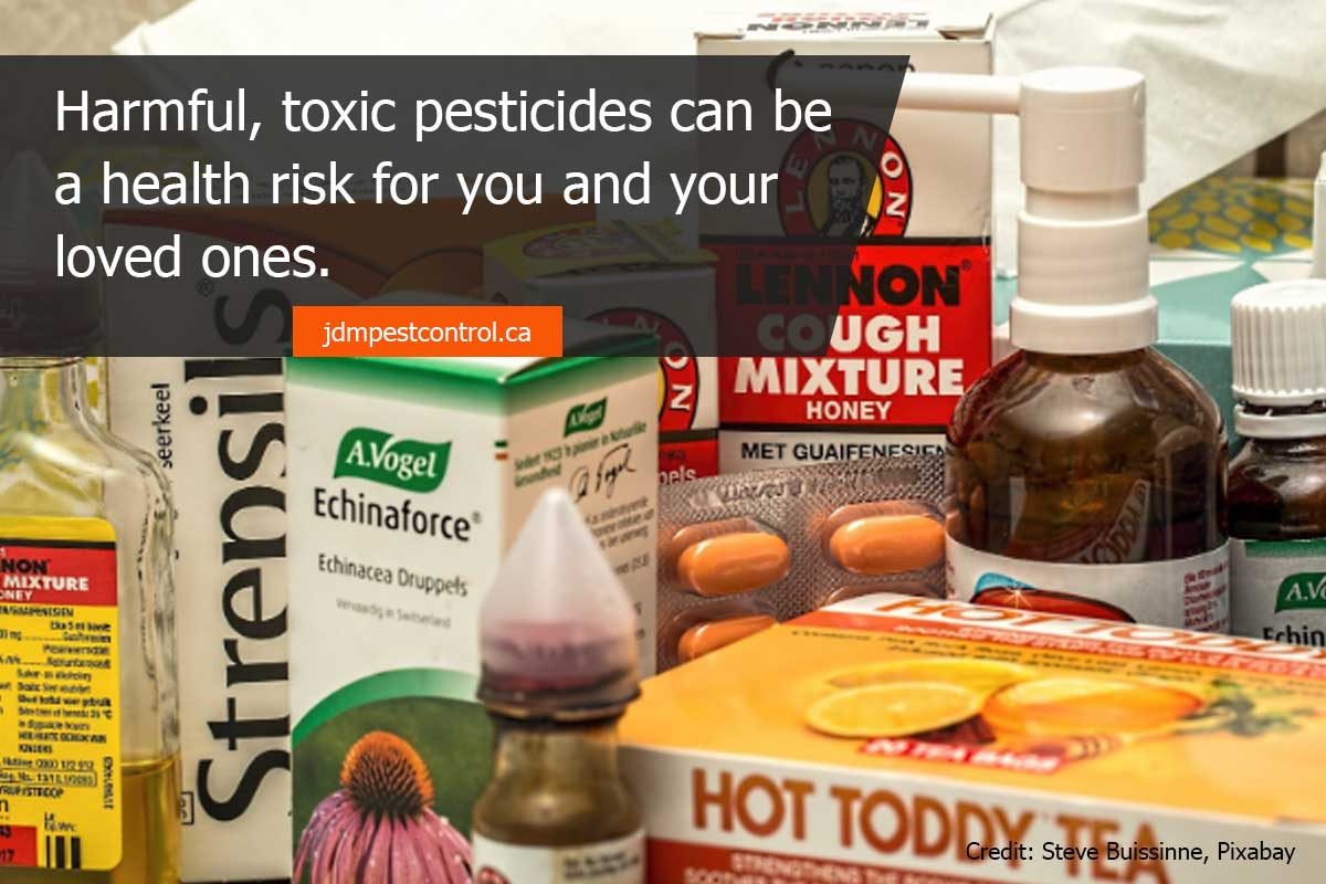 Harmful, toxic pesticides can be a health risk for you and your loved ones.