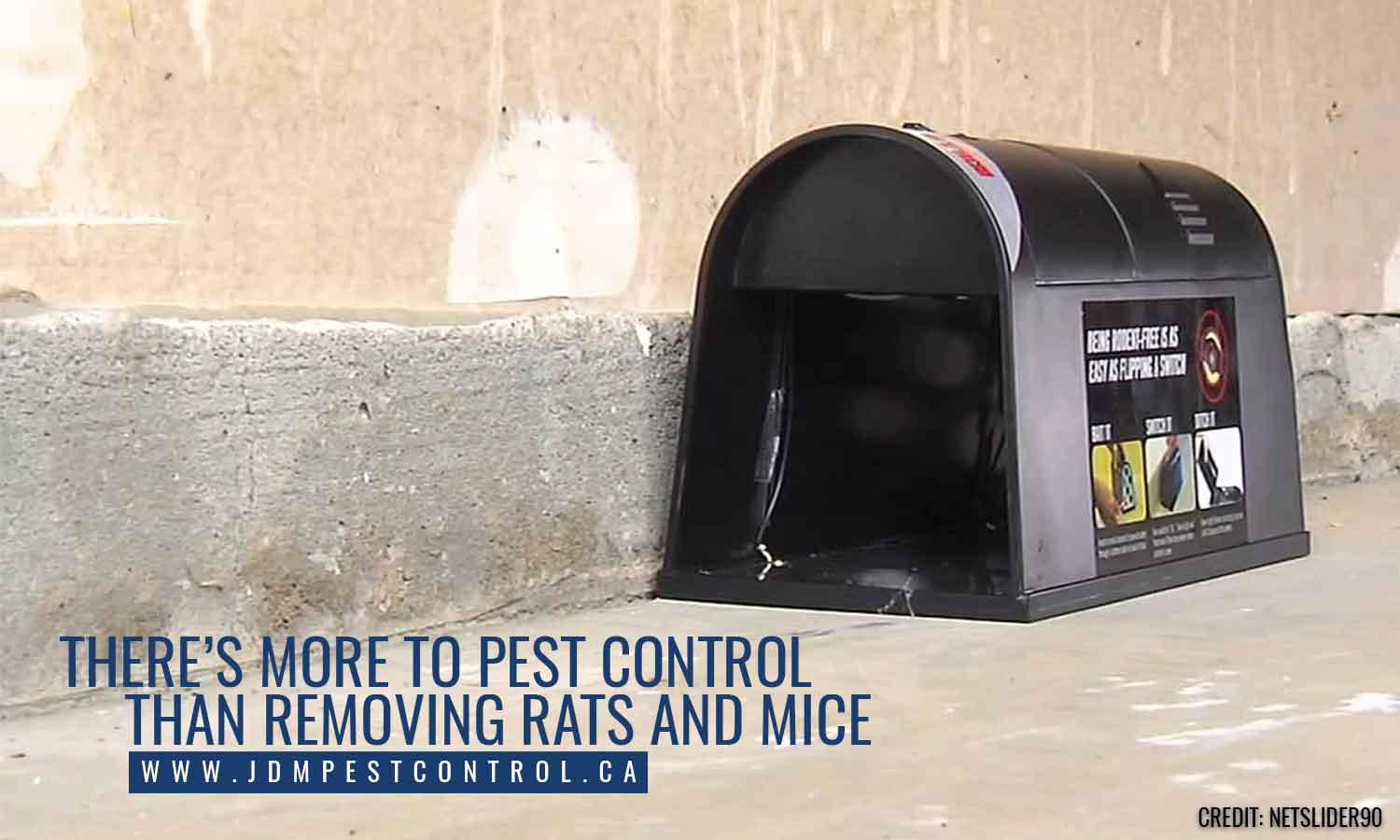 There's more to pest control than removing rats and mice
