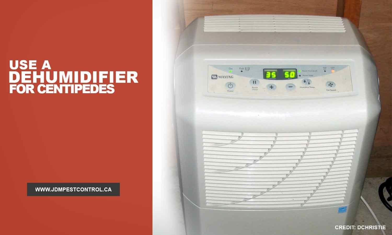 Use a dehumidifier for centipedes