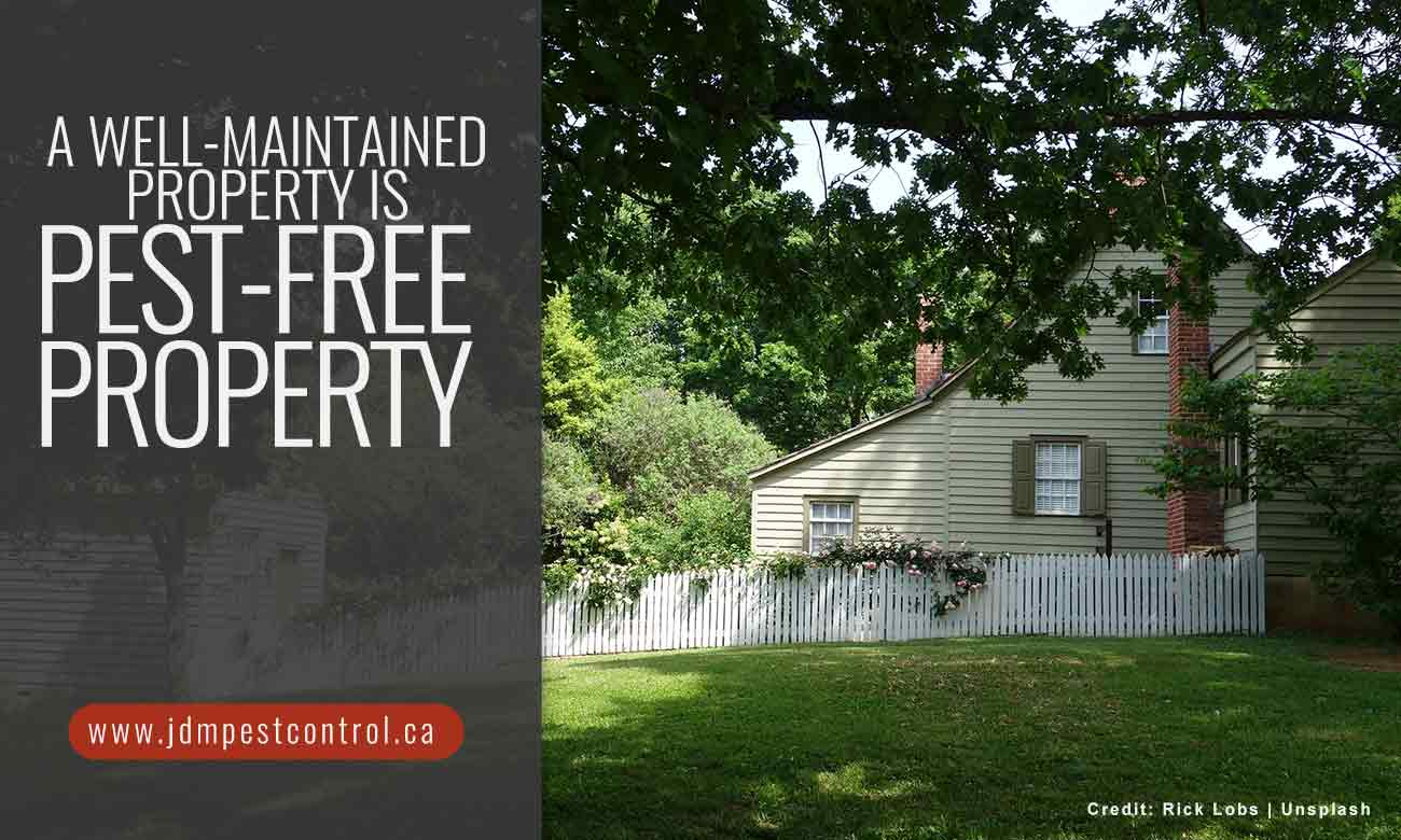 A well-maintained property is pest-free property.