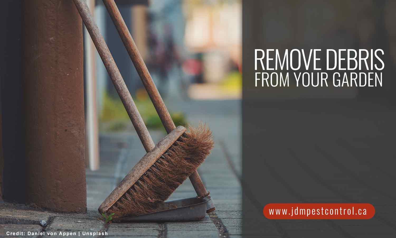 Remove debris from your garden