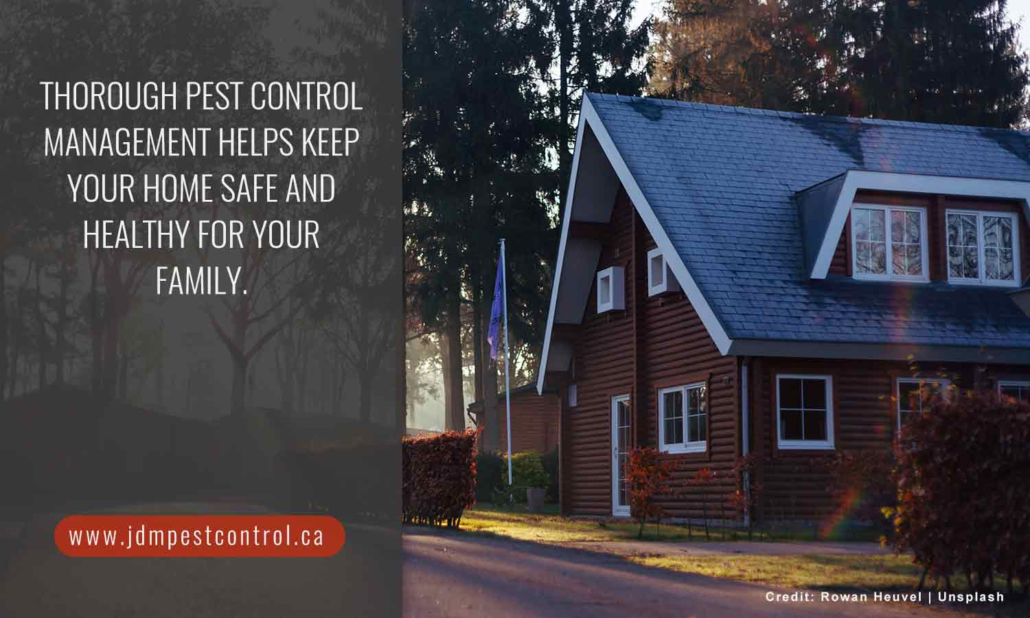 Thorough pest control management helps keep your home safe and healthy for your family.