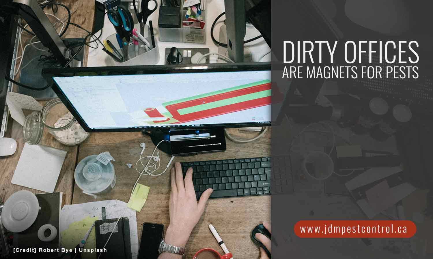 Dirty offices are magnets for pests