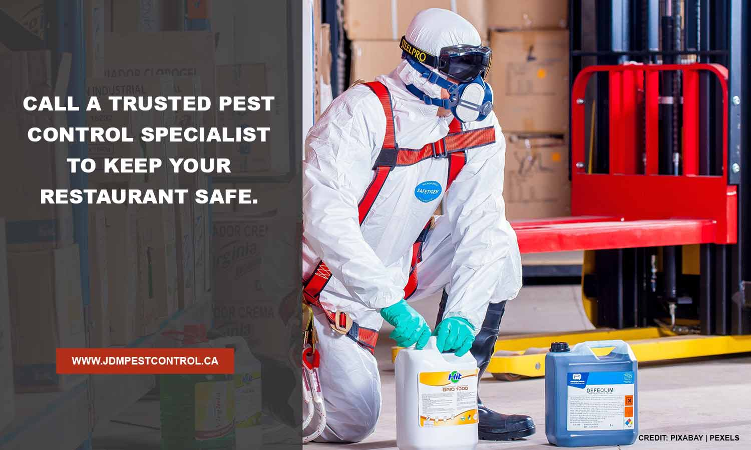 Call a trusted pest control specialist to keep your restaurant safe.