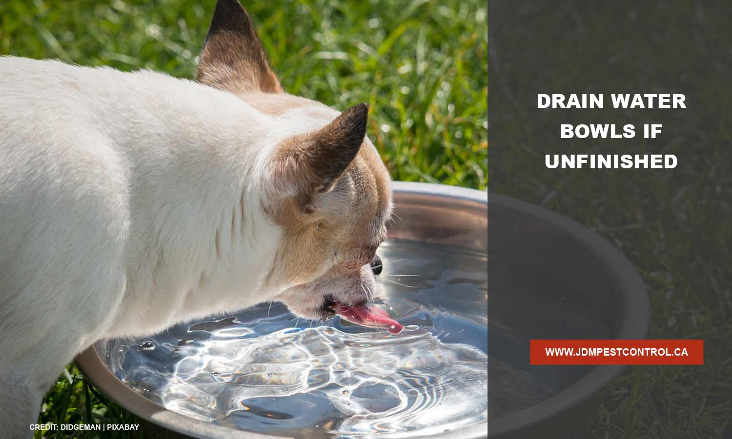 Drain water bowls if unfinished