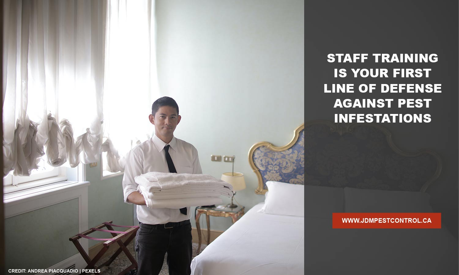 Staff training is your first line of defense against pest infestations
