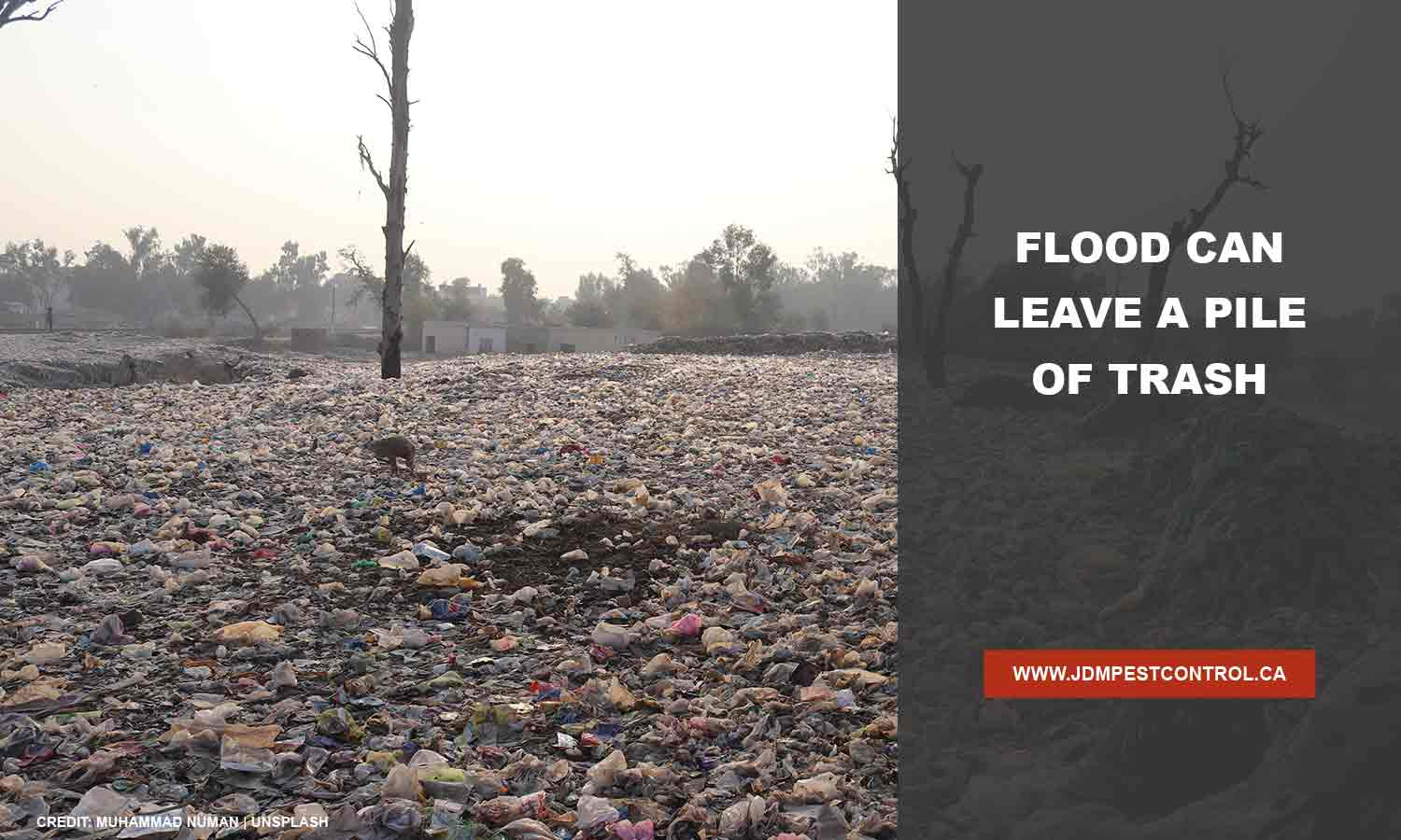 Flood can leave a pile of trash