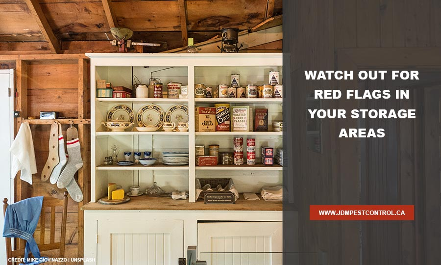 Watch out for red flags in your storage areas