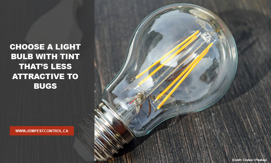 Choose a light bulb with tint that's less attractive to bugs