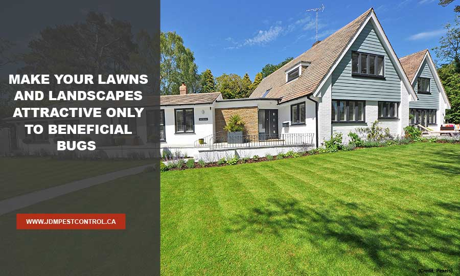 Make your lawns and landscapes attractive only to beneficial bugs