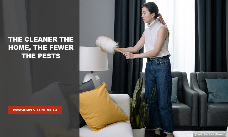 The cleaner the home, the fewer the pests