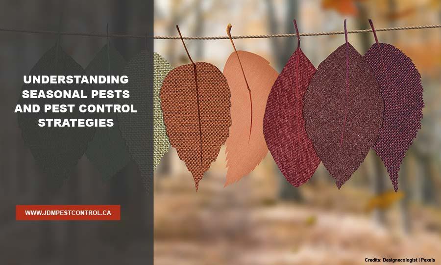 Understanding Seasonal Pests and Pest Control Strategies